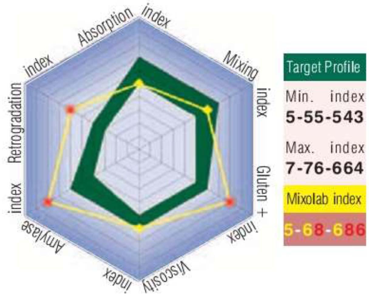 Máy phân tích khối bột mì đa chỉ tiêu - hình ảnh kết quả hiển thị