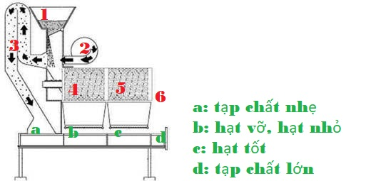 Máy đo tạp chất của hạt - Quy trình hoạt động